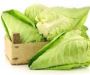 Witte kool fruit salade