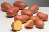 Aardappelabonnementen